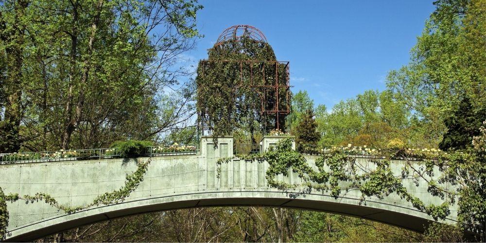 Tour en el Jardín Botánico de Atlanta